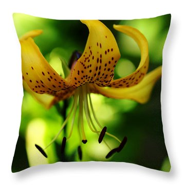 Tiger Lily Throw Pillow by Debbie Oppermann