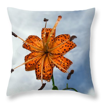 Tiger Lily In A Shower Throw Pillow
