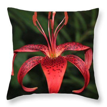Tiger Lily Throw Pillow by Sergey Lukashin