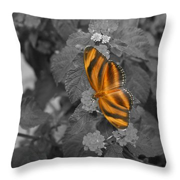 Tiger On The Wing 1 Colorized Throw Pillow