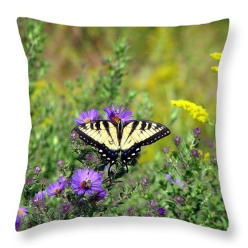 Tiger Swallowtail Butterfly 1 Throw Pillow by George Jones