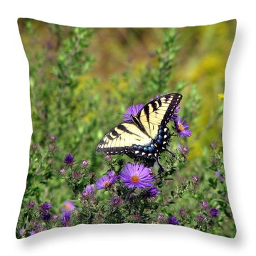 Tiger Swallowtail Butterfly 2 Throw Pillow by George Jones