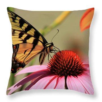 Tiger Swallowtail Butterfly Coneflower Throw Pillow by John Burk