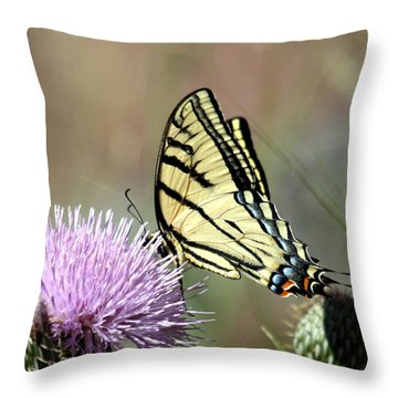 Tiger Swallowtail On Thistle 2 Throw Pillow by George Jones