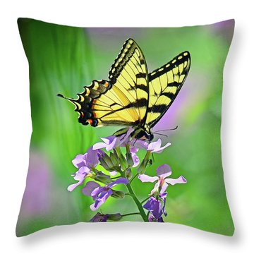 Throw Pillow featuring the photograph Tiger Swallowtail by Rodney Campbell