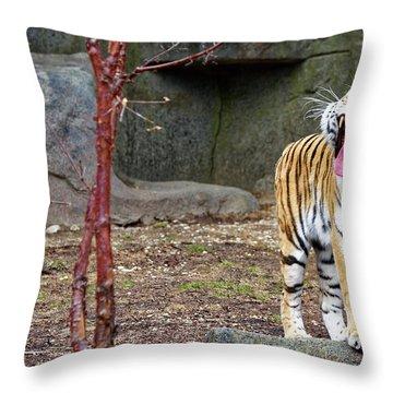 Tiger Tiger Burning Bright Throw Pillow