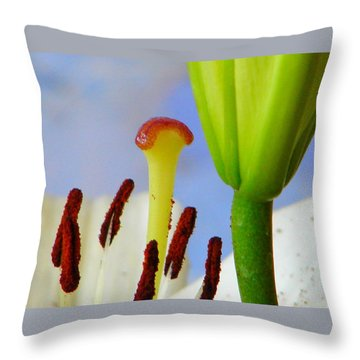 Throw Pillow featuring the photograph Tigerlily Close-up by Ana Maria Edulescu