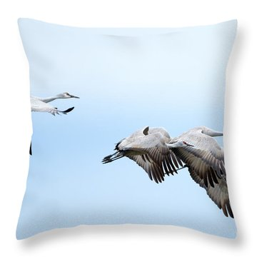 Tight Formation Throw Pillow by Mike Dawson