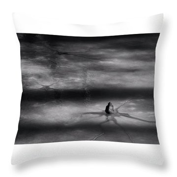 Throw Pillow featuring the photograph Til Spring by Mark Fuller