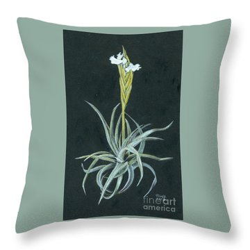 Tillandsia Diaguitensis Throw Pillow
