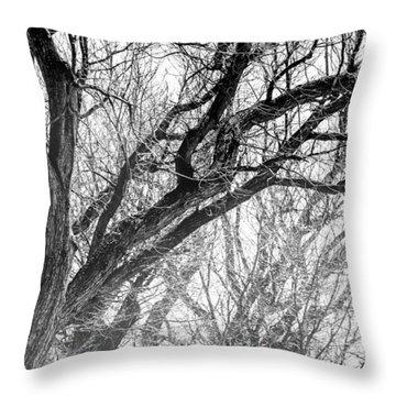 Timber Tentacles Throw Pillow