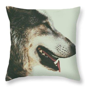 Alpha Wolf Throw Pillows