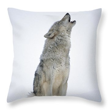 Timber Wolf Portrait Howling In Snow Throw Pillow