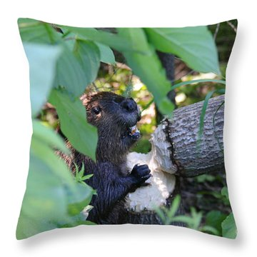 Timberrrrr Throw Pillow by Sandra Updyke