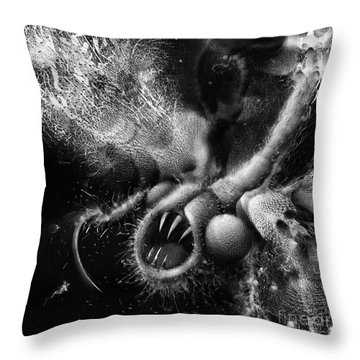 Throw Pillow featuring the digital art Time Aerials Squamafly by Russell Kightley