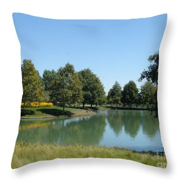 Time For A Dip Throw Pillow