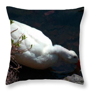 Time For A Drink Throw Pillow by RC DeWinter