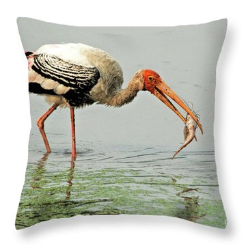 Time For A Meal Throw Pillow by Pravine Chester