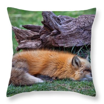 Time For A Nap Throw Pillow by Laurinda Bowling