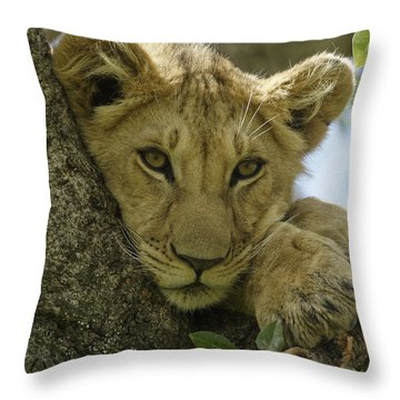 Time For A Nap Throw Pillow by Michele Burgess