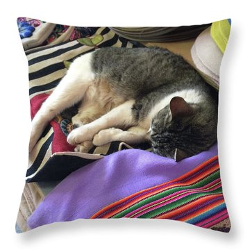 Time For A Siesta Throw Pillow