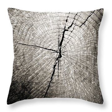 Time Passage Throw Pillow by Colleen Kammerer