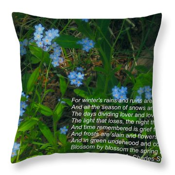 Time Remembered Is Grief Forgotten Throw Pillow