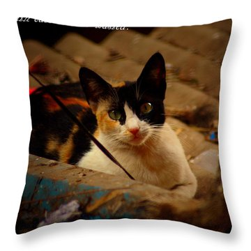 Time Spent With Cats. Throw Pillow