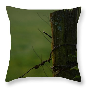 Time Tested Throw Pillow