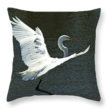 Time To Land Throw Pillow by Carolyn Marshall