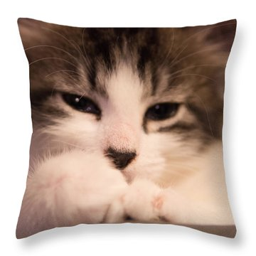 Throw Pillow featuring the photograph Time To Nap by Erin Kohlenberg