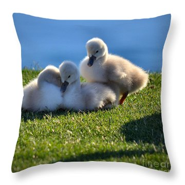 Time To Snuggle Throw Pillow