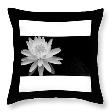 Black And White -timeless Lily Throw Pillow