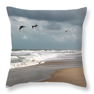 Timeless Throw Pillow by Megan Dirsa-DuBois