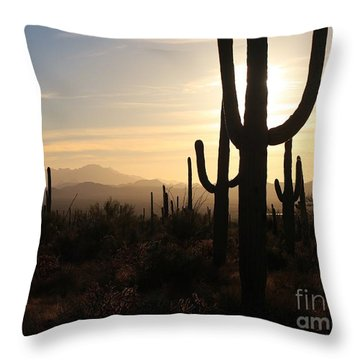 Timeless Throw Pillow by Sheila Ping