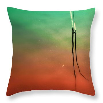 Timeless Throw Pillow by Susanne Van Hulst