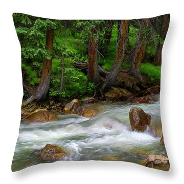Throw Pillow featuring the photograph Timeless by Tim Reaves