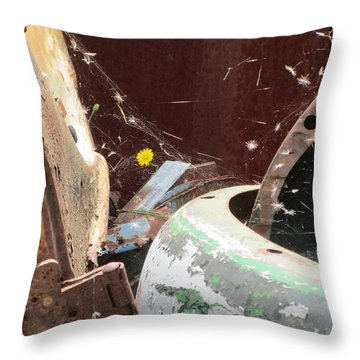 Throw Pillow featuring the photograph Timeless Wish by Marie Neder