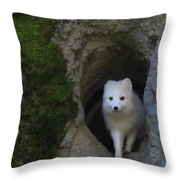Timidly Throw Pillow