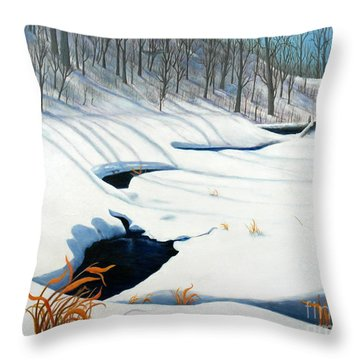 Timm Drive Ravine Throw Pillow