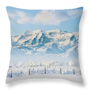Timp In Winter Throw Pillow