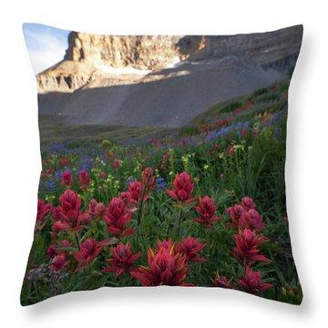 Timpanogos Paintbrush Throw Pillow