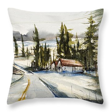 Tin Roof Rusted Throw Pillow by Judith Levins