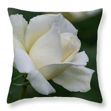 Tineke Rose 1 Throw Pillow
