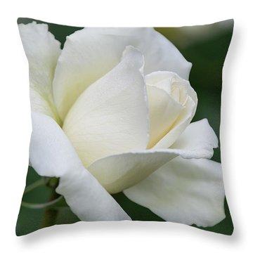Tineke Rose 4 Throw Pillow