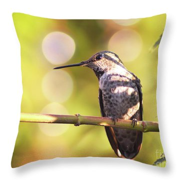 Tiny Bird Upon A Branch Throw Pillow