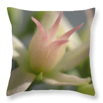 Tiny Crown Throw Pillow