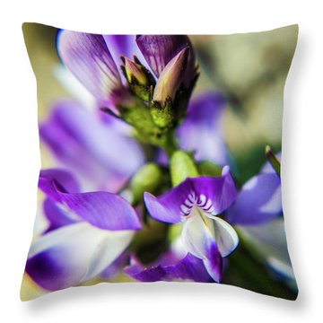 Throw Pillow featuring the photograph Tiny Flower by Tyson Kinnison