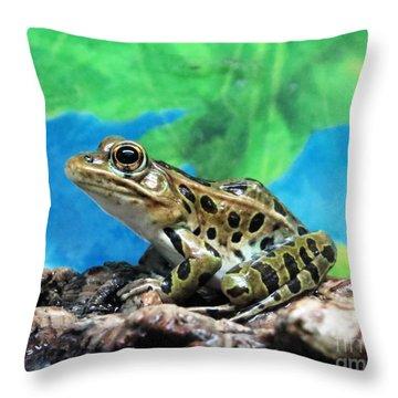 Tiny Frog Throw Pillow