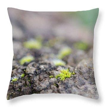 Tiny Life Throw Pillow